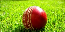 Cricket_ball_on_grass[1] (720x360)