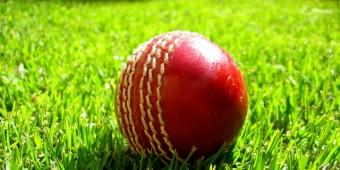 Cricket_ball_on_grass[1] (720x360)