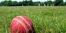 cricket11